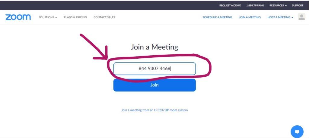 Type in Meeting ID